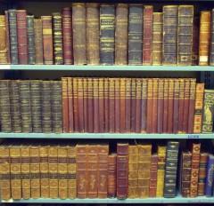 knjige2-920x891