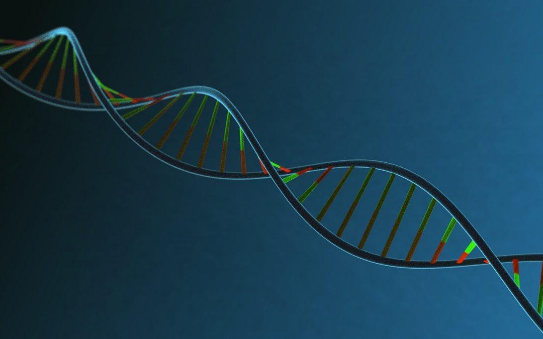 Povezanost majčinog emocionalnog stanja u trudnoći i placentarne metilacije DNA gena uključenih u regulaciju serotoninske signalizacije